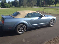 2005 Ford Mustang Pony Convertible