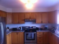 Solid wood kitchen cabinets and countertops for sale - Maple