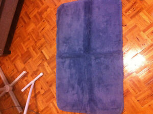 Only $10 for 2 bathroom rugs