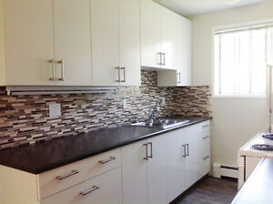 Awesome Kitchen and Bathroom in Fully Renovated Bach Suite