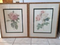 Bombay Co Framed And Numbered Flower Prints