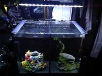 Fish tank by Aqua One,complete with LED lights filtration system heater etc
