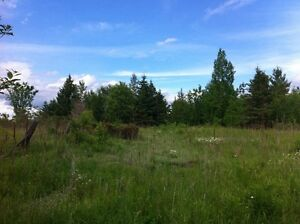 20 ACRE BUILDING LOT near Cobden