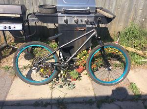 Norco maddog eastern series bike!