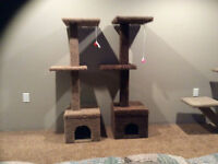 well built cat tower with houses