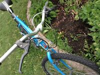 """Raleigh Rocky 21 speed 20"""" Frame Solid Mountain Bike"""