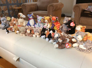 TY Beanie Babies - too many to count!