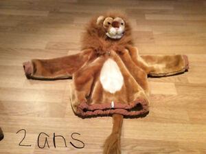 DEguisement de lion