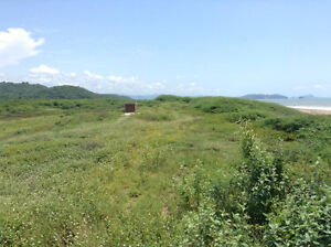 Will Trade Mexico Beach Property for Cabin Cottage in Ontario Kingston Kingston Area image 4