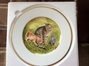 Wedgwood Collector plate