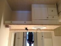 New bathroom cabinet, sink with Moen tap, with new countertop.