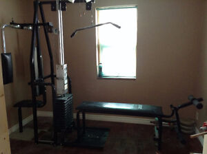 Complete workout bench Kitchener / Waterloo Kitchener Area image 1