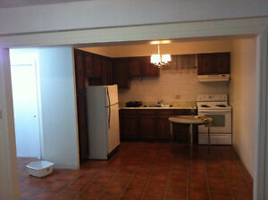 Very nice basement apartment in Thornhill - November 1st