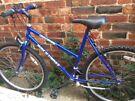 Blue High Flier Gold Medal Adults Bike
