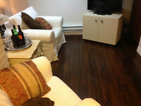 Executive fully furnished/equipped Bachelor Apartment