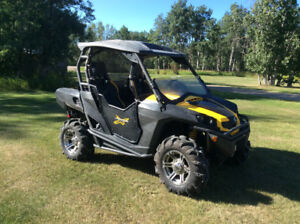 CanAm Side by Side