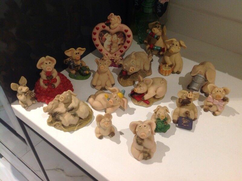 Piggin collection