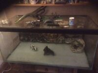 Fish tank 4ft 2ft 21cm and accessories