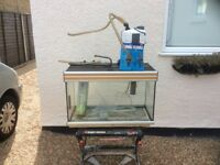 Complete tropical aquarium fish tank set up