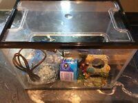 Fish Tank Aquarium Starter Kit with Filter Pump