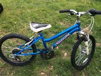 Vélo fille NAKAMURA roues 20 pouces et six vitesses