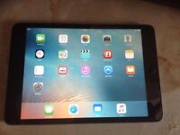 Apple mini iPad 16gb