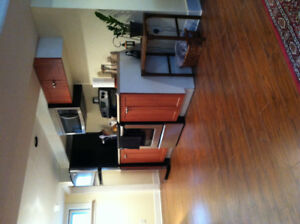 Furnished 1bdrm basement suite for rent-Lacombe