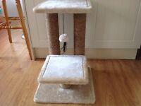 Cat Scratching Post.