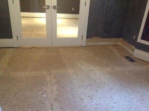 WE ARE THE BEST IN FLOOR REMOVAL! CALL NOW! 289.456.4083 Kitchener / Waterloo Kitchener Area image 3