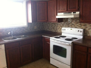 2 bedroom + laundry room with hook ups.