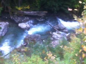 plaser claim on ferguson creek by trout lake Revelstoke British Columbia image 1