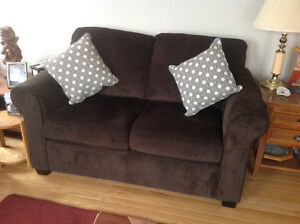Sofa and loveseat. Reduced for quick sale