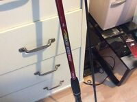 Spin fishing rod with extras