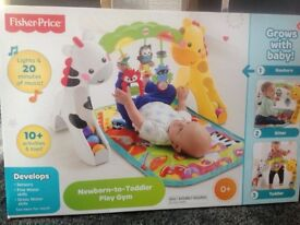 Fisher price newborn to toddle play gym