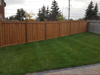 Fence and Deck Construction and Repairs