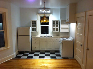 Classy New renov. ground floor, Downtown NG with Heat pump/AC
