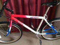 Klein Top Gun collectors Mountain Bike - retro old school bicycle vintage - downhill Brompton