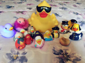 Delightful Collection of Assorted Rubber Ducks