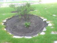 GREAT PRICES!!! JackohServices Landscaping, Renovations