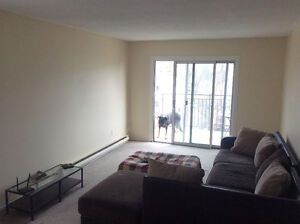 Summer room to rent, close to Loyalist.