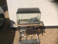 2FT complete tropical aquarium fish tank set up