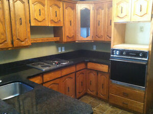 Cabinet get a great deal on a cabinet or counter in for Kitchen cabinets winnipeg