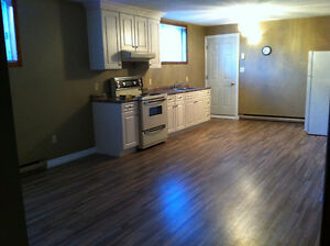 Beautiful/CLEAN 1 Bedroom Apartment For Rent Immediately!