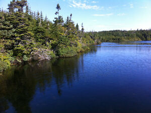 Prime Waterfront Lot - REDUCED by $80,000 - Portugal Cove