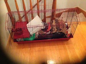 Rabbit cage with food, bedding and treats