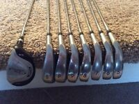 Prosimmon golf irons and driver
