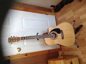 Norman acoustic guitar