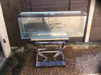 4FT clear seal aquarium vivarium fish tank set up