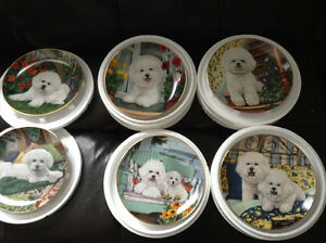 Collectible plates of Bichon dogs