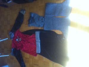 Adult Medieval Knight/King Costume Halloween Kitchener / Waterloo Kitchener Area image 1